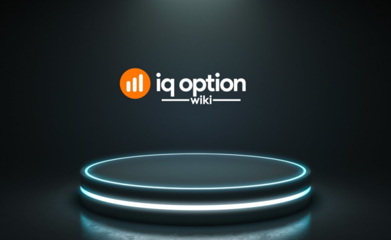 ip option